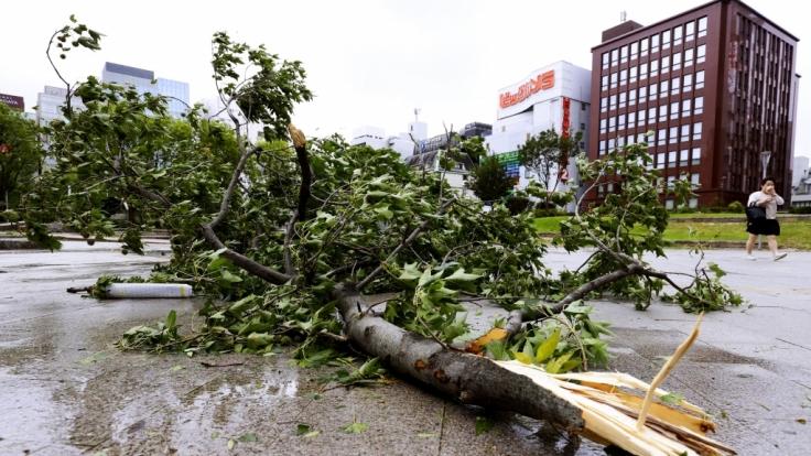 """Taifun """"Haishen"""" hat in Japan schwere Unwetter-Schäden verursacht und nimmt nun Kurs auf Südkorea. (Foto)"""
