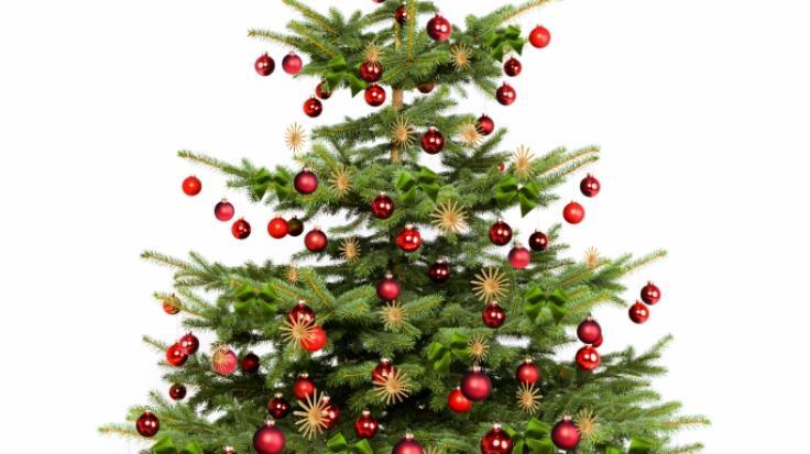 Den Sturz von einem Weihnachtsbaum aus mehreren Metern Höhe bezahlte ein Mann in Schottland mit dem Leben (Symbolbild). (Foto)