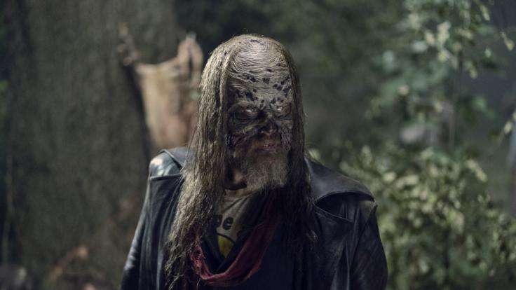 Walking Dead Staffel 9 Stream