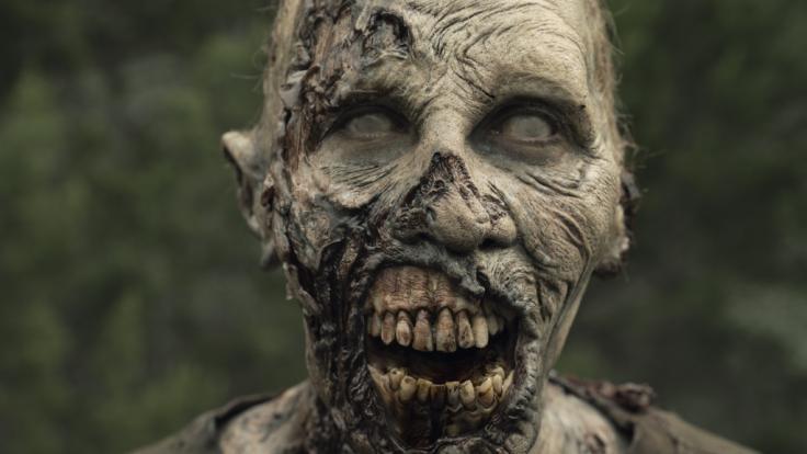 """""""Fear The Walking Dead"""" geht in die fünfte Staffel. (Foto)"""