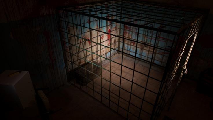 Jahrelang musste ein behindertes Mädchen in einem Kellerverlies leben. (Foto)