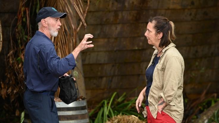 Daniela Büchner feiert ihre Soloauftritte beim Dschungelcamp. (Foto)