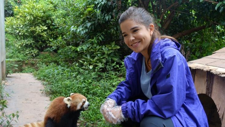 Anna und die wilden Tiere bei Das Erste (Foto)