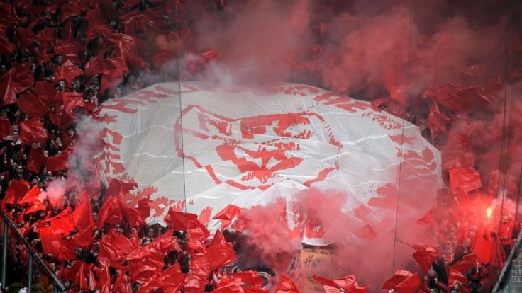 Mit roten Fahnen unterstützen die Fans vom Halleschen FC ihre Mannschaft. (Symbolbild) (Foto)