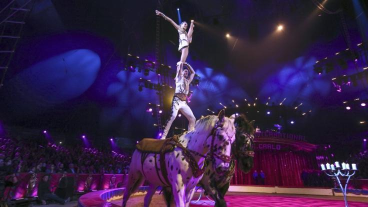 Beim 42. Internationalen Zirkusfestival von Monte Carlo zeigen Weltartisten ihr Können.