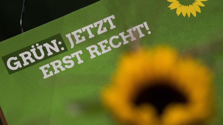 Bündnis 90 / Die Grünen hoffen bei der Bundestagswahl 2017 auf ein positiveres Ergebnis als bei der Wahl 2013.