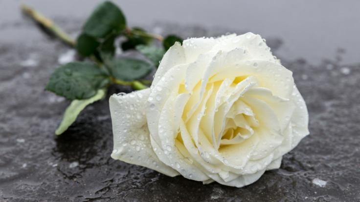 """Trauer in Hollywood: """"Police Academy""""-Star Art Metrano ist im Alter von 84 Jahren gestorben (Symbolfoto). (Foto)"""