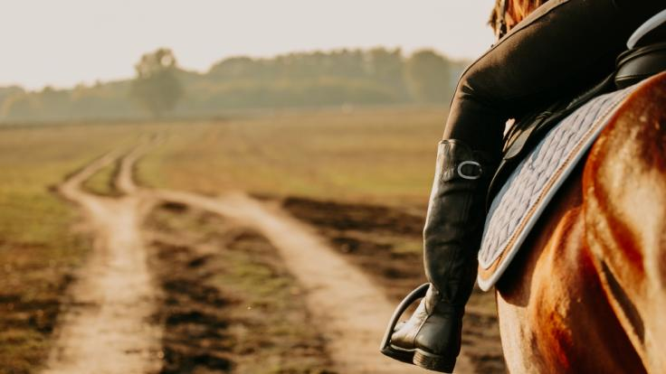 In Großbritannien riss sich ein Teenager bei einem Reitunfall den halben Unterkiefer ab. (Foto)