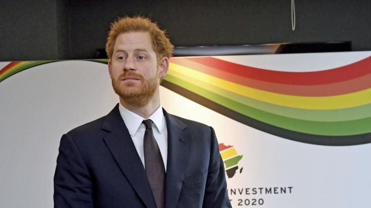 """Wenn das Prinz Harry wüsste: Seine ExCamilla Thurlow hatte im TV Sex bei """"Love Island"""". (Foto)"""