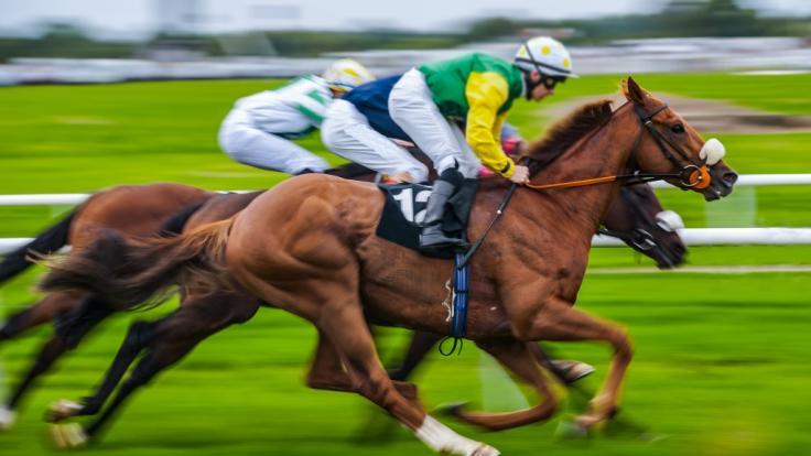 Ein Sturz beim Pferderennen kostete Jockey Lorna Brooke das Leben - sie wurde nur 37 Jahre alt (Symbolbild). (Foto)
