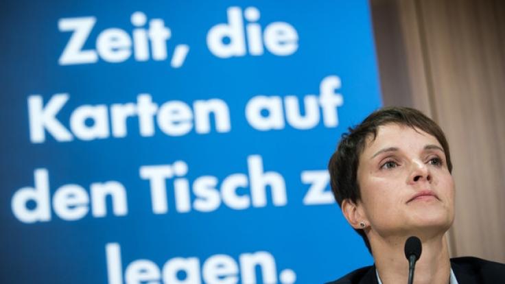 Ein neues Buch beleuchtet die Hintergründe der Alternative für Deutschland.