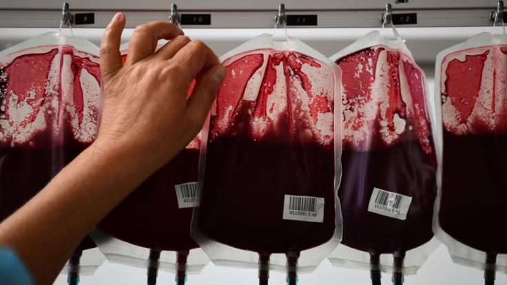 Wo auf der Welt gibt es für Blut die meisten Gegenleistungen? (Foto)