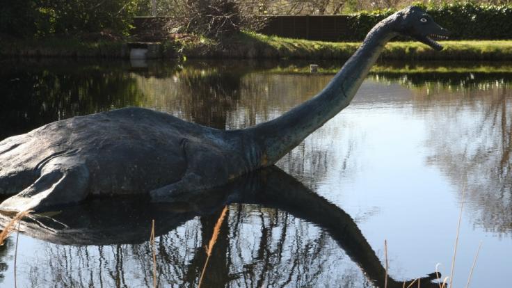 """Haben Forscher das Rätsel um """"Nessie"""", das legendäre Monster aus dem Loch Ness, gelöst? (Foto)"""