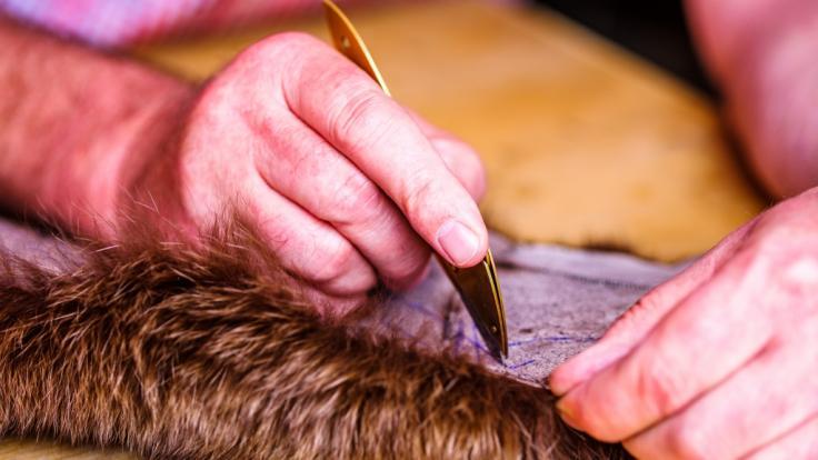 (Symbolbild): In Kentucky hat ein Mann Hunde gehäutet für einen Fell-Mantel. (Foto)