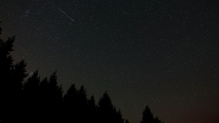 In der längsten Nacht des Jahres kann man die Ursiden am Himmel sehen. (Foto)