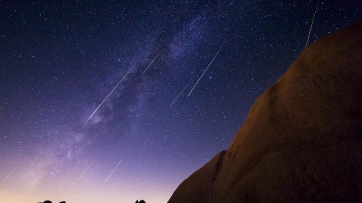 Der Sternschnuppenstrom der Perseiden lässt pro Stunde bis zu 100 Meteore über den Himmel flitzen. (Foto)