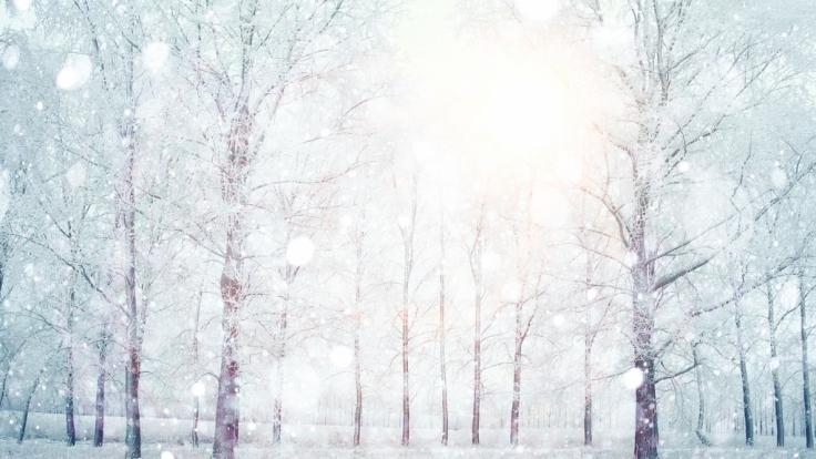 Wie wird das Winter-Wetter 2016/2017? (Foto)