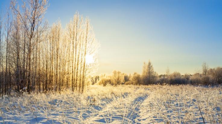Die aktuellen Winter-Wetter-Aussichten im Überblick. (Foto)