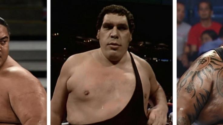 DIESE Fleischberge standen bei World Wrestling Entertainment im Ring.