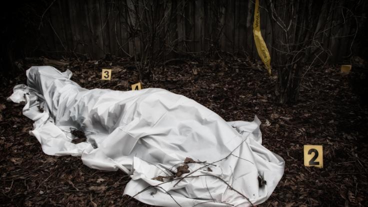 Ein Jugendlicher hat seinen Liebhaber in einem Wald erschlagen. (Symbolfoto) (Foto)