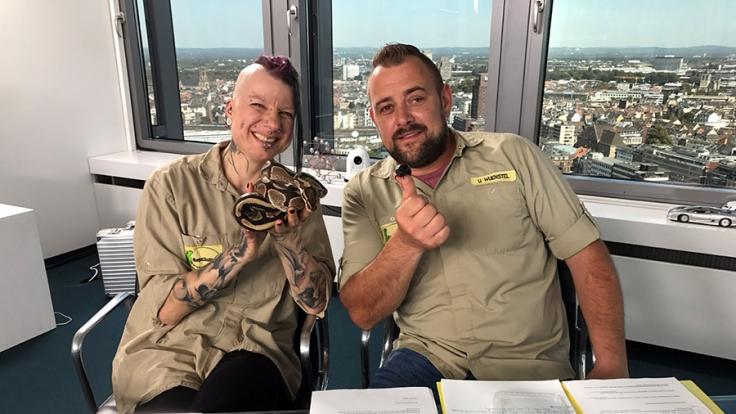 Das Team vom Reptilium sucht nach Unterstützung. (Foto)