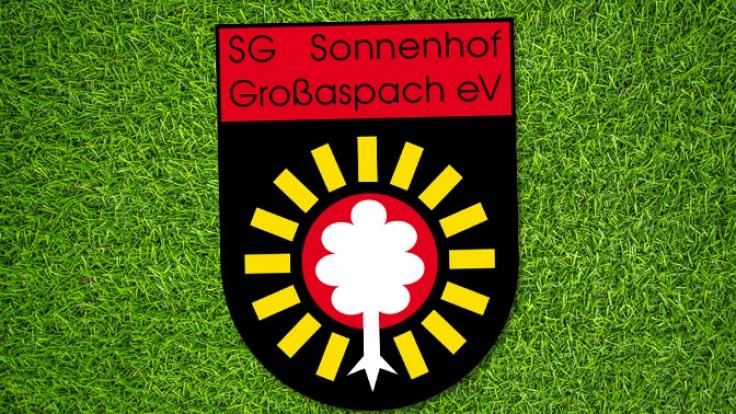 Heimspiel SG Sonnenhof Großaspach: Die aktuellen Spielergebnisse der 3. Liga bei news.de