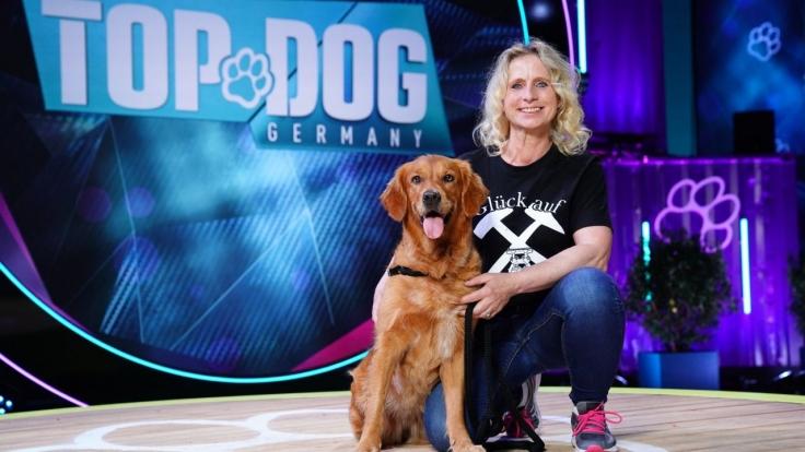 Top Dog Germany - Der beste Hund Deutschlands bei RTL (Foto)