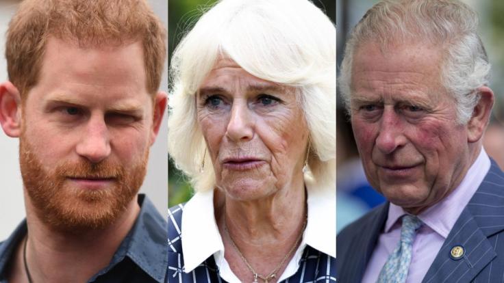 Die eine oder andere Schlagzeile ließ die Royals in dieser Woche staunend zurück. (Foto)