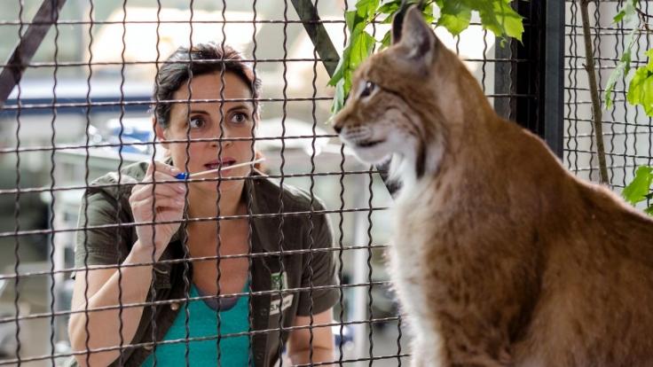 Tierärztin Dr. Mertens bei MDR (Foto)