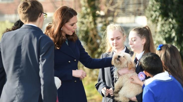 Zwei, die sich verstehen: Kate Middleton kuschelt mit ihrem neuen Freund, dem Mischlingshund Bear.