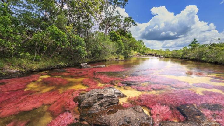 Eine der biblischen Plagen der Endzeit? Ein Gebirgsfluss nahe Ontario färbte sich blutrot.