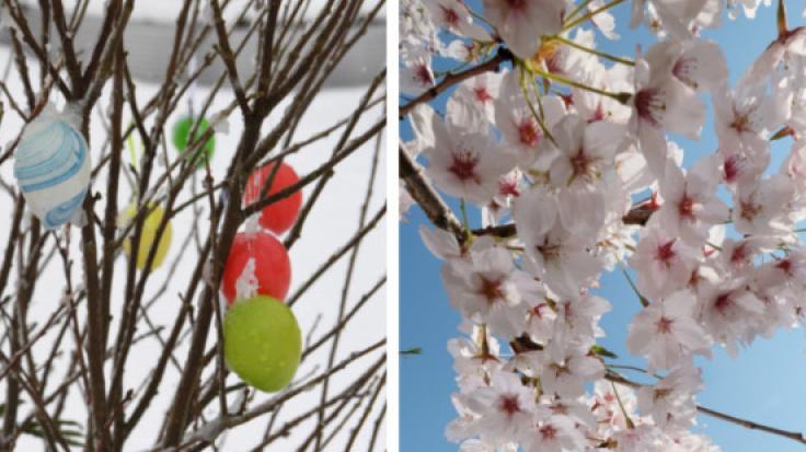 Schneefall oder Sommer-Comeback? Wie wird das Oster-Wetter 2019?