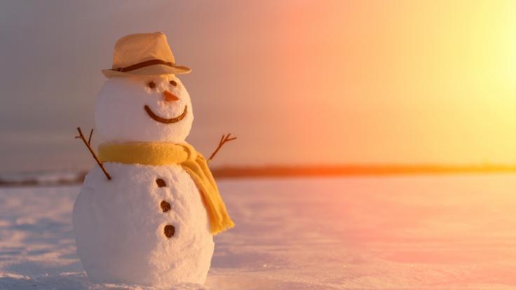 Erwartet uns ein eisiger Januar?