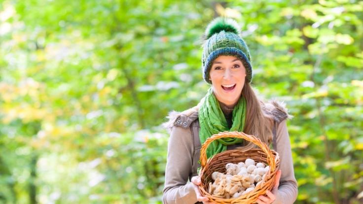 Pilze haben durchaus eine heilende Wirkung auf den menschlichen Körper. (Foto)