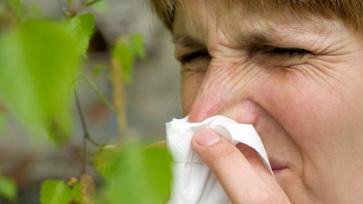 Eine Frau mit Heuschnupfen und Taschentuch vor ihrer Nase. Für Heuschnupfengeplagte beginnt nun eine lange Leidenszeit. (Foto)