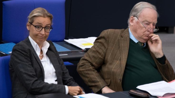 Wegen illegaler Parteispenden muss die AfD eine Strafe von über 400.000 Euro zahlen. (Foto)