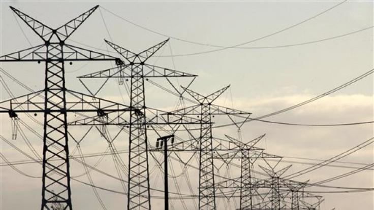 Vorsicht! Bitte nicht in der Nähe von Strommasten pinkeln! (Foto)