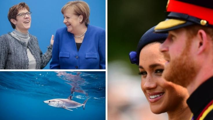 Die Nachrichten des Tages auf news.de.