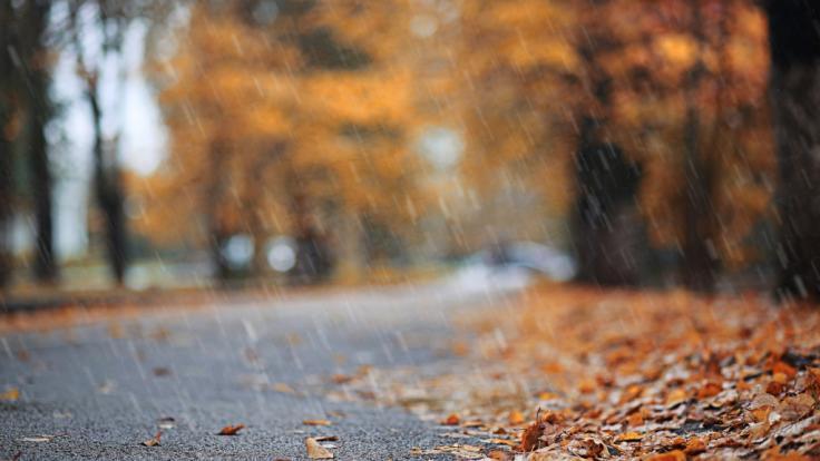 Es wird nass und grau in Deutschland. (Foto)