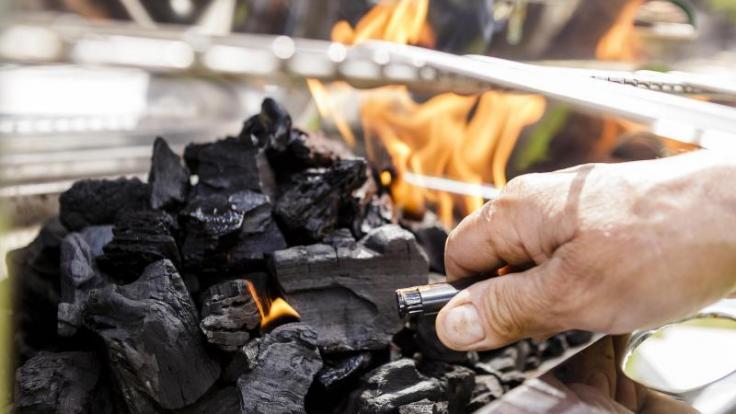 Holzkohle für den Grill stammt am besten von heimischen Hölzern und aus legaler Waldbewirtschaftung. (Foto)
