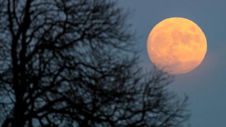 Bei der Mond-Diät hilft der Erdtrabant beim Abnehmen.