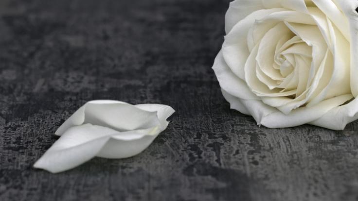 Soap-StarJohnny Leeze ist mit 78 Jahren gestorben. (Foto)