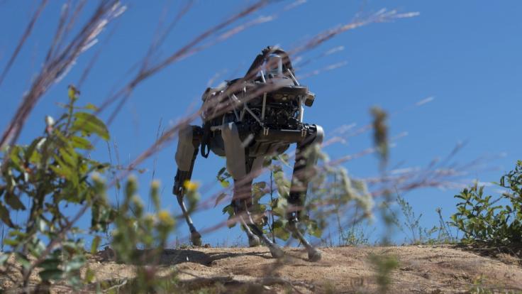 Der vierbeinige Roboter