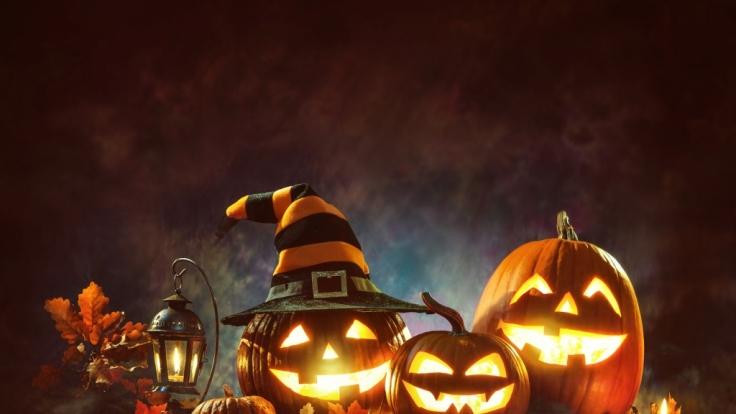 Schaurig schöne Kürbisse an Halloween.
