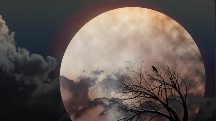 Im März können Astronomiefans einen düsteren Krähenmond am Himmel sehen. (Foto)