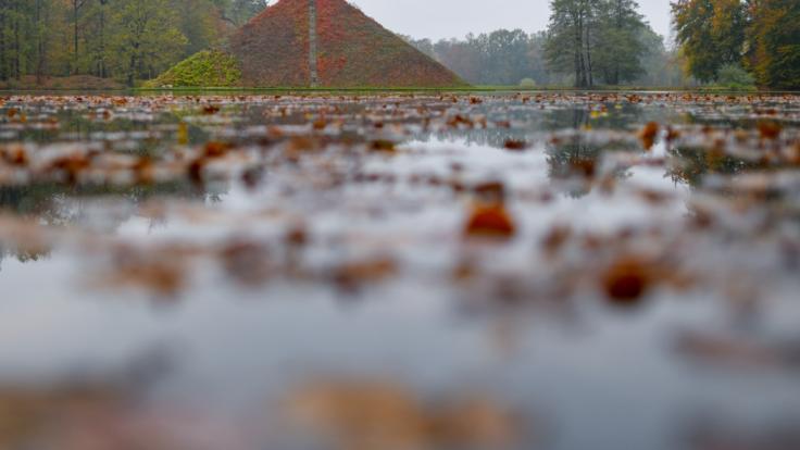 Pünktlich zum Start in den November geht dem Spätsommer die Puste aus - es wird nass-kalt in Deutschland. (Foto)