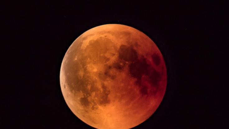 In dieser Woche dürfen sich Hobbyastronomen auf eine totale Mondfinsternis freuen. (Foto)