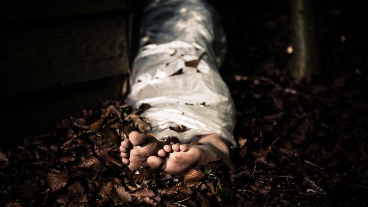 Eine Sechsjährige wurde tot im Wald gefunden. (Foto)