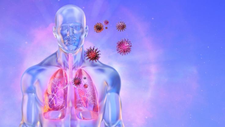 Ein Forschungsprojekt zu Corona-Langzeitfolgen ergab: Jeder fünfte Corona-Erkrankte leidet unter Organschäden. (Foto)