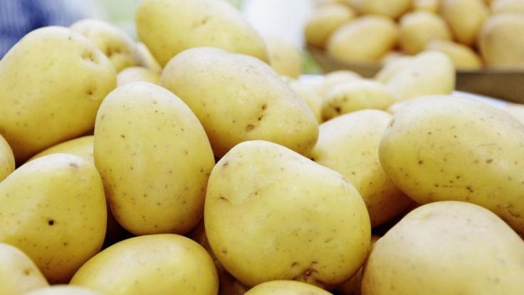 Unbeschädigte Kartoffeln ohne keimende Stellen können Verbraucher bedenkenlos essen. (Foto)